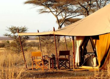 Luxury Private Safaris