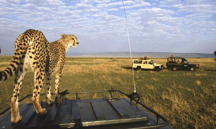 banner-masai-mara-game-reserve-750x450